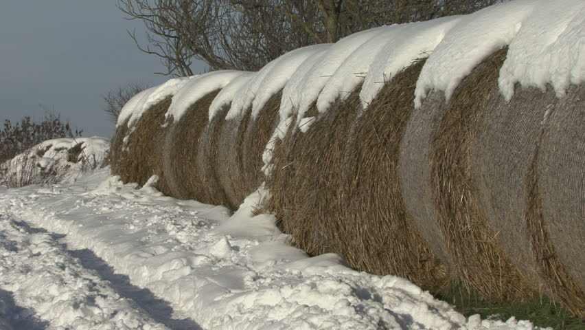 Zoom out from straw bales covered with snow to a wider view of a farm track on a sunny winter day.