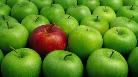 Red Apple In Green Apples - Individual Concept