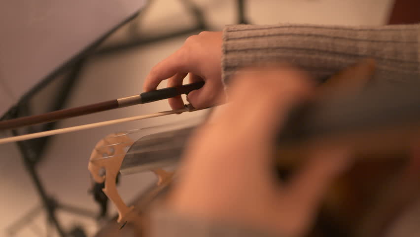 Musician playing violin | Shutterstock HD Video #1007131909