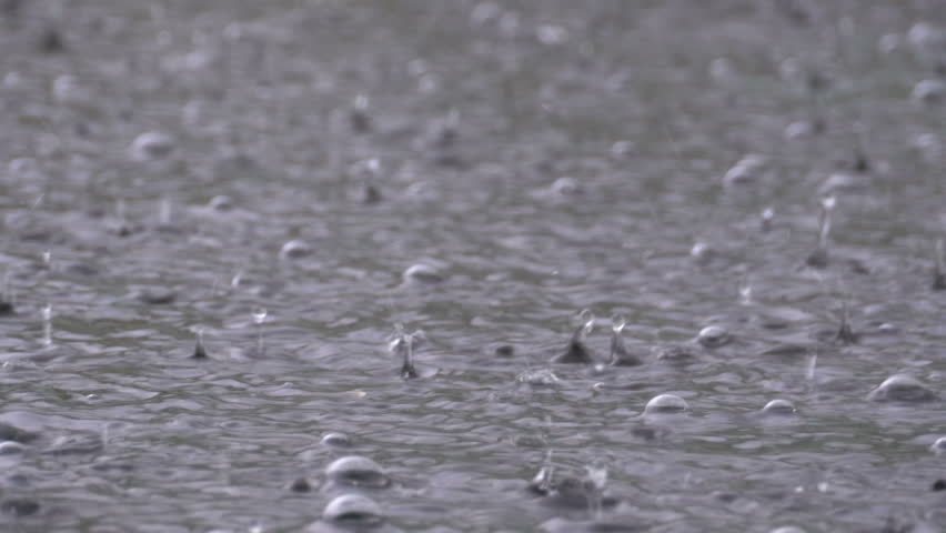 Large Drops of Rain fall in a Puddle During a Rainstorm. Water Drops. Close-up. Heavy rain fall background.