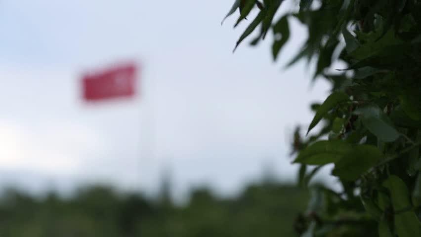 Header of Kemal Ataturk
