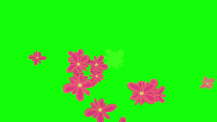 Green screen and Flower movement    Shutterstock HD Video #1008097969