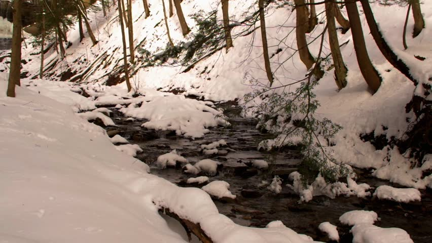 Tinker Falls Creek in Upstate New York