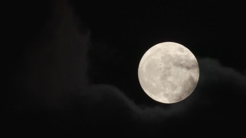 Midnight Stock Video Footage - 4K and HD Video Clips | Shutterstock
