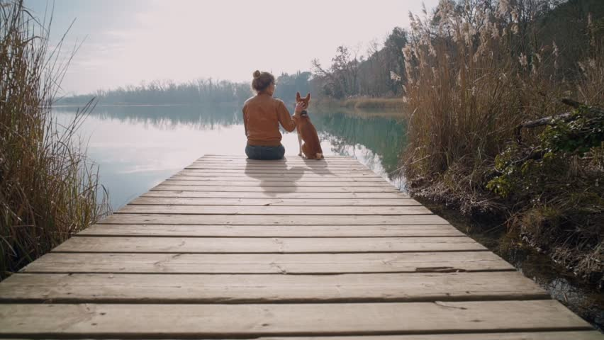 Young hipster woman or teenager in brown leather jacket sits on edge of pier or boardwalk with best friend puppy dog and overlooks beautiful lake scenery. Shows best friend nature adventures | Shutterstock HD Video #1008626659