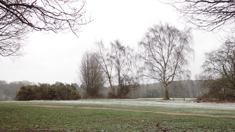 Chorleywood Common during snowfall, Hertfordshire, UK