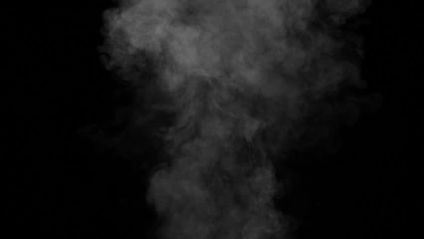 Slow motion of white powder puff isolated on black background | Shutterstock HD Video #1008746309