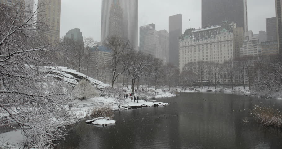 New York City Central Park in snow | Shutterstock HD Video #1008879659