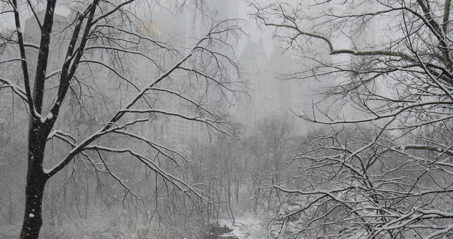 New York City Central Park in snow | Shutterstock HD Video #1008879689