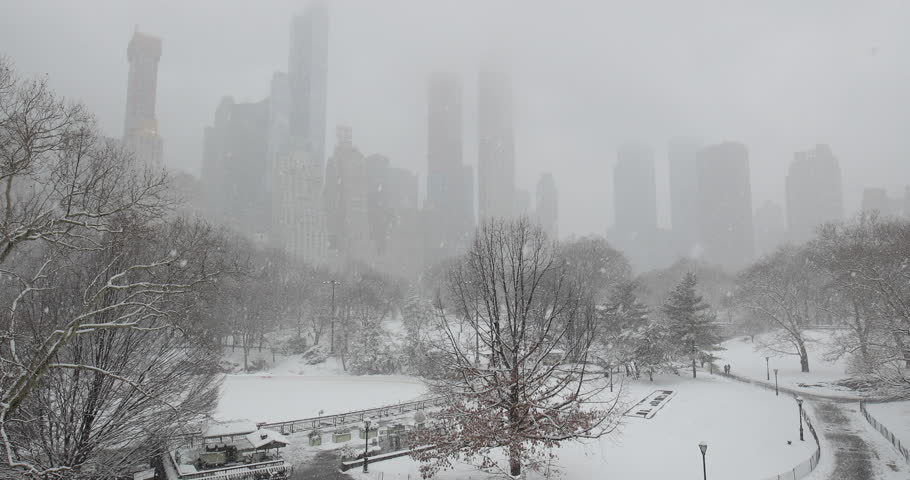 New York City Central Park in snow | Shutterstock HD Video #1008879719