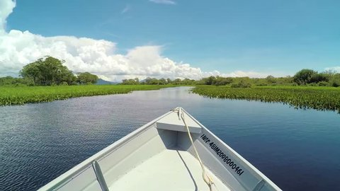 Pantanal, Brazil - March 24, 2018: Navigating on a tourist boat that take tourists for a eco tour and fishing. Navigating through aguapes plants on the wetlands of Pantanal in Mato Grosso do Sul.