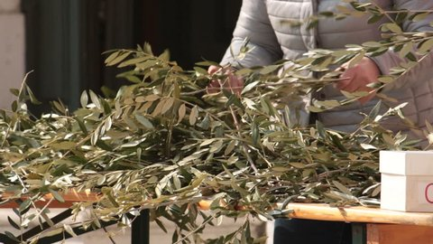 dry olive branches. Preparation of symbolic objects outside the church to distribute them to the faithfuls. (Palm Sunday)