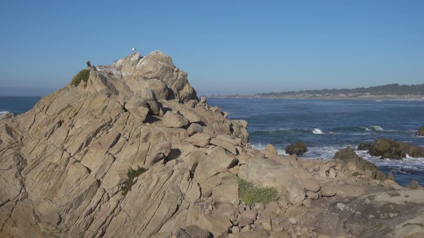 Coastline at Point Joe, 17 Mile Drive, Monterey, California, USA