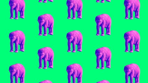 Minimal Motion design art.  Purple Elephant on a green background