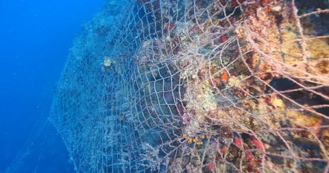 ghost hunting fish net so big underwater fisherman