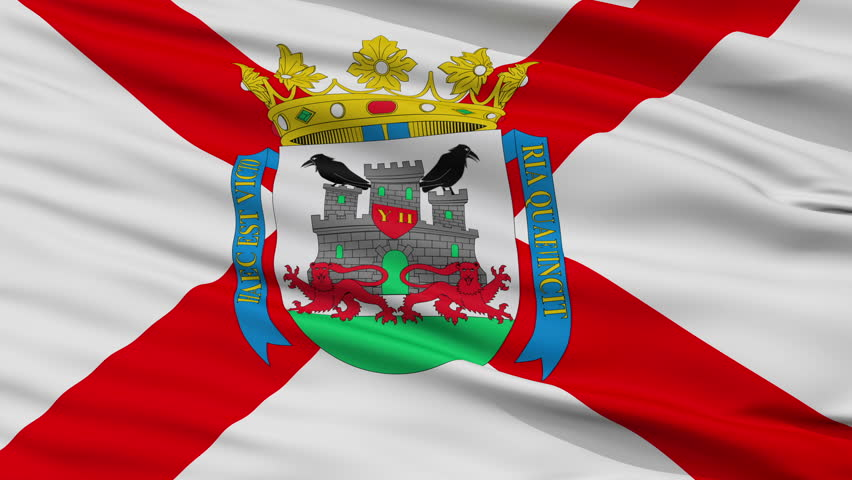 Vitoria closeup flag, city of Spain, realistic animation seamless loop - 10 seconds long