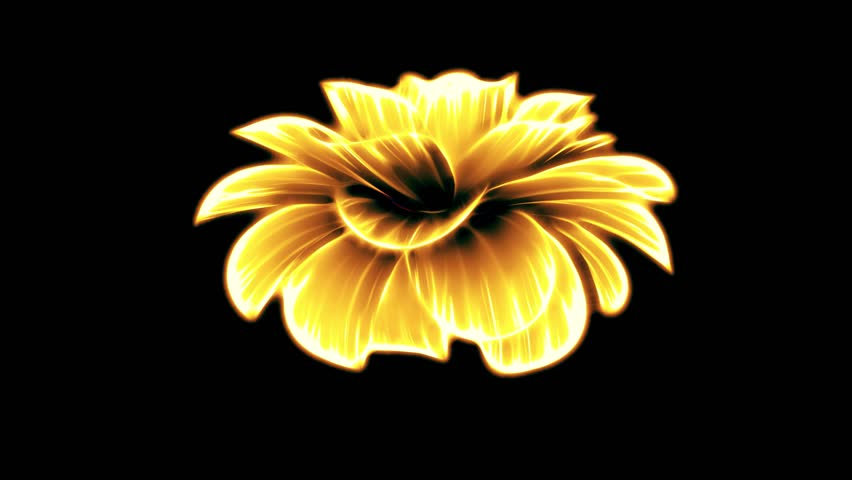 opening long blooming yellow neon flower time-lapse 3d animation isolated on background new quality beautiful holiday natural floral retro vintage cool nice 4k video footage