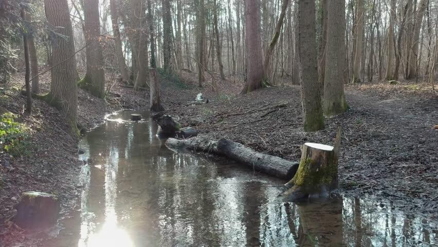 A low drone flight along a winter stream in the woods   Shutterstock HD Video #1010276159