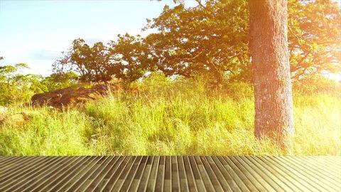 Wood Deck Table, Park Garden Nature Background, Bright Sun Light Lens Flare View
