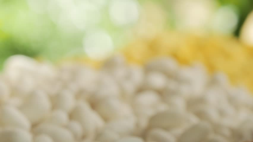 White and Yellow silk worm. | Shutterstock HD Video #1010417279
