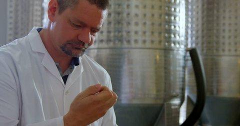 Mature male worker smelling sloe gin in factory 4k