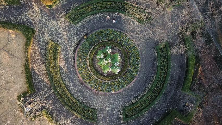 Hamarikyu Japanese Botanical Garden Circle Zen Fly Up in Ginza Tokyo Japan