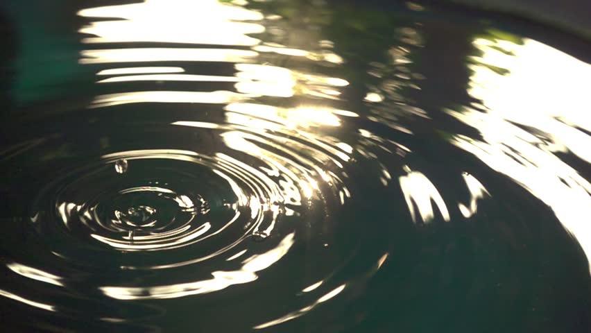 Water drop slow motion | Shutterstock HD Video #1010689919