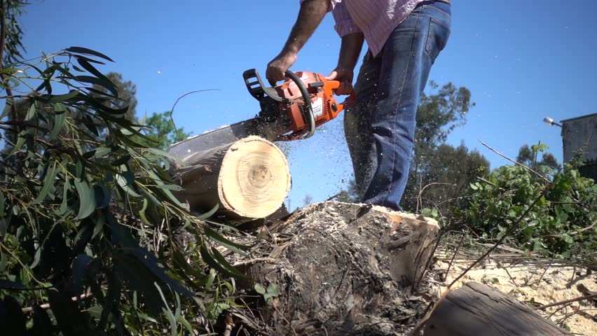 Working With Chainsaw, Super Slow Motion   Shutterstock HD Video #1010712629