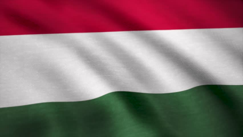 Fabric Flag of Hungary. Flag of Hungary background
