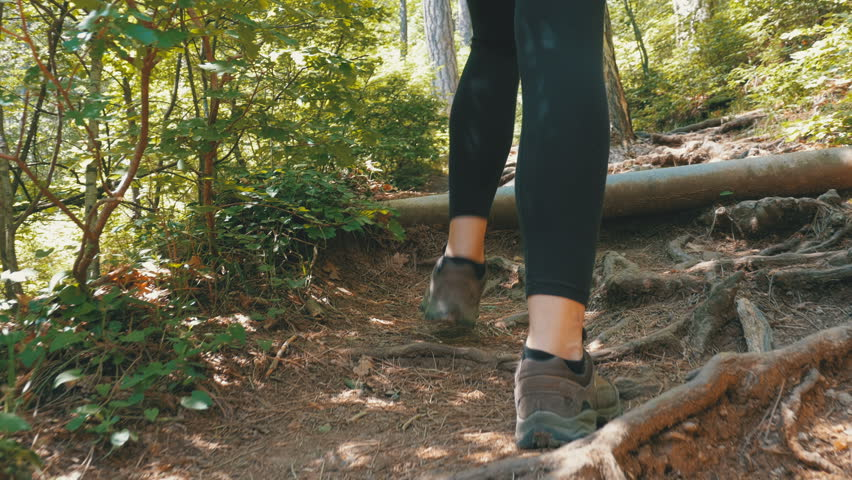 View on Feet of Traveler Woman Hiking on the Forest Trail Path in Mountain. Walking on Rocks. The camera behind the girl moves smoothly. Achieving the goal. Forward movement, motivation. #1010991269