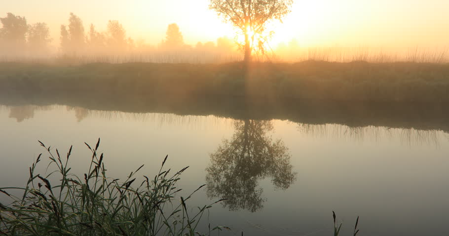 Misty dawn on the river with the first sunrays. Video with original sound - bird song. | Shutterstock HD Video #1011034709