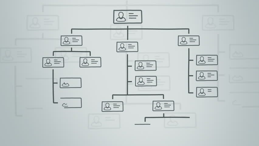 animation of a company organization chart on a whiteboard. hand drawn style