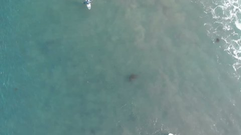 Surfers on Waves Aerial Top View Malibu California USA