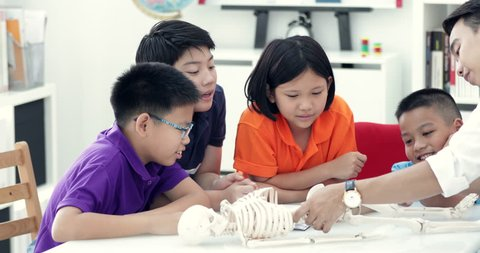 Asian teacher expanding to student in anatomy class with skeleton dummy .