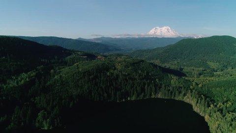 Washington Green Forest Aerial Mt Rainier Background