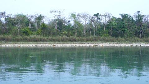 Royal Chitwan National Park, Nepal