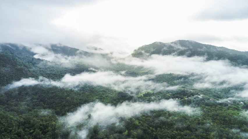 Aerial flight above misty jungles in South America