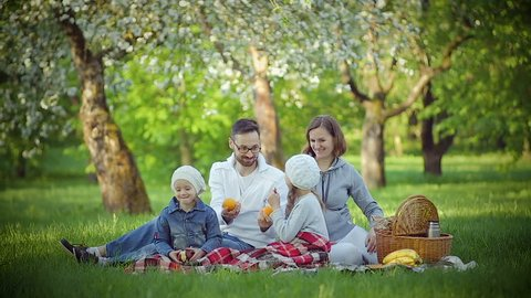 Family picnic in the Park on the grass