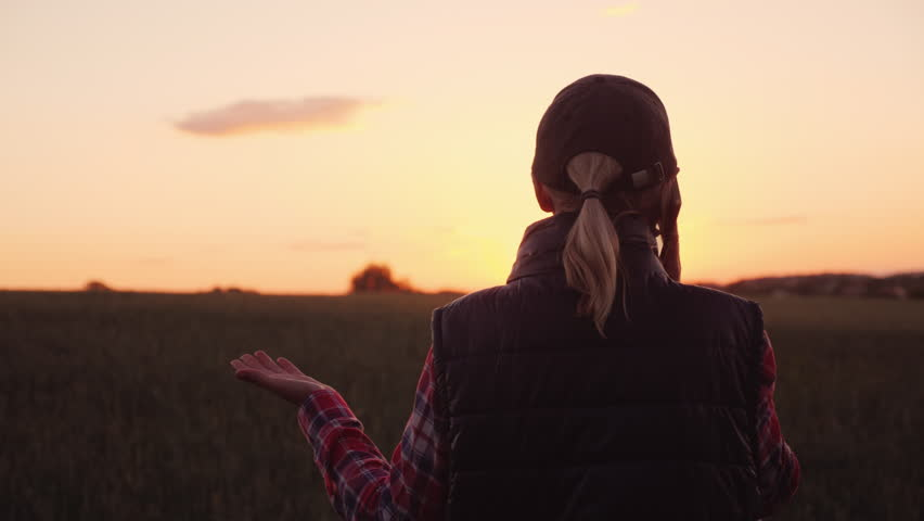 An angry farmer is talking emotionally on the phone. Standing in the wheat field at sunset