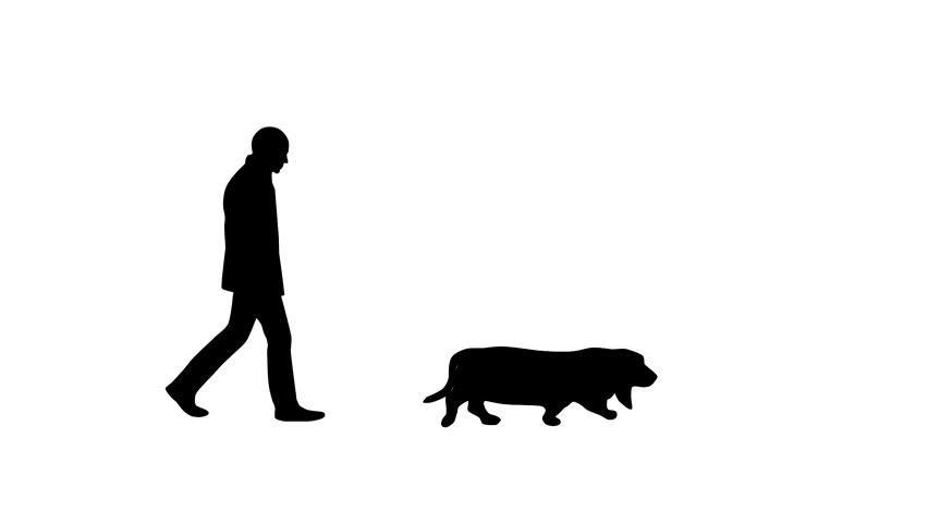 Man walking with dog (basset hound), animation