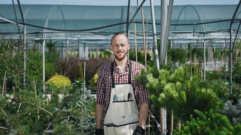 Ride the camera. The bearded gardener looks and smiles at the camera. A sunny day in agricultural greenhouse. Portrait of a man who works in the garden. Slow motion.
