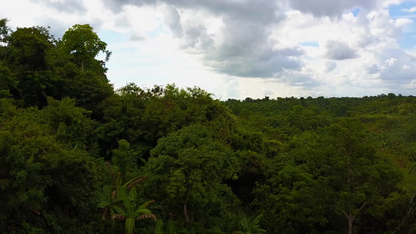 A Drone POV flies over a forest and fields in Haiti | Shutterstock HD Video #1012368839