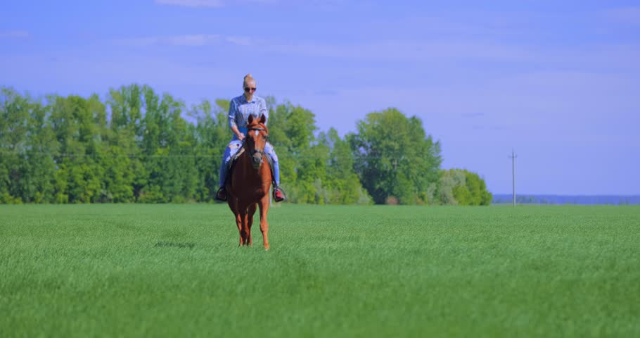 Young woman riding horse in a field during summer sunshine