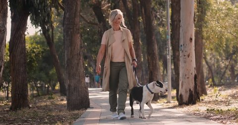 Happy fashionable senior woman walking with dog in park in the afternoon