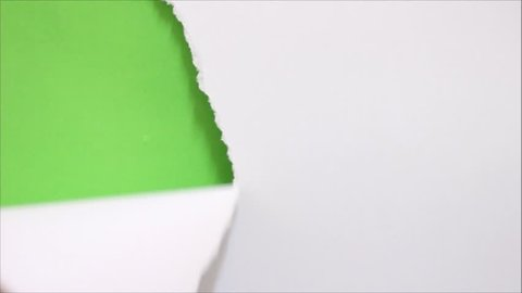 Tearing white paper into torn green screen background