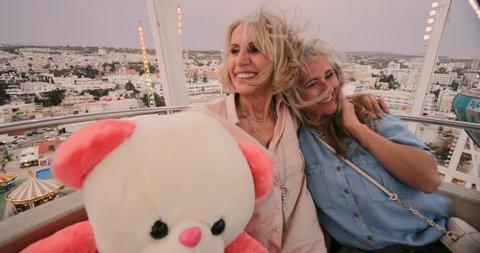 Senior women with teddy bear enjoying amusement park ferris wheel ride and looking at view