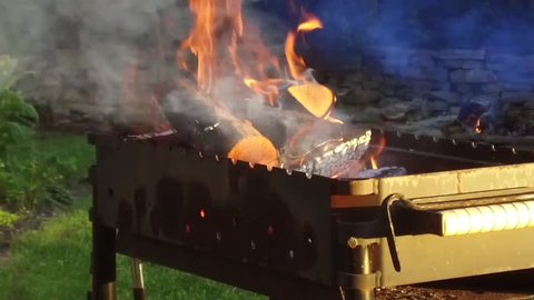 cooking, heat and barbecue concept - firewood burning in brazier outdoors