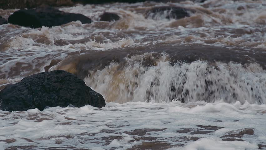 Noisy River and Grat Roll