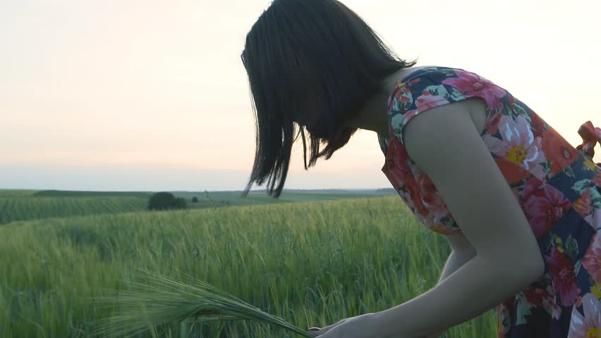 beautiful, attractive European girl with short black hair in short skirt with flowers breaks the green rye in the field and puts it in the fist