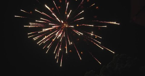 Two aerial fireworks going off, one after another with slight delay, on fourth of July. Shot in double speed slow motion, on Sony FS7.
